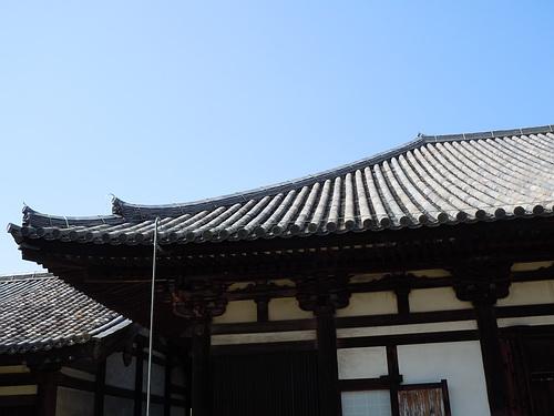 奈良旅行(2010.5月) 270