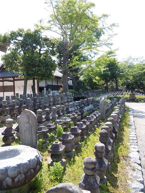 奈良旅行(2010.5月) 237