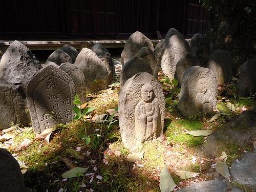 奈良旅行(2010.5月) 254