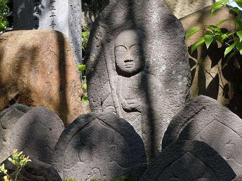 奈良旅行(2010.5月) 257