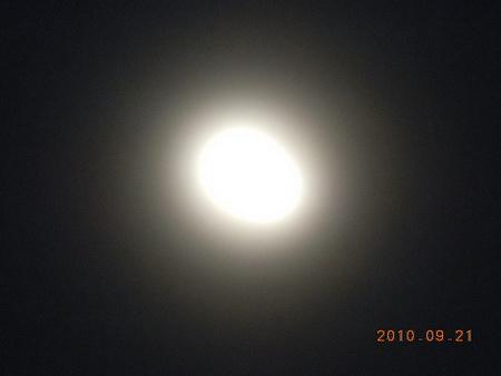 DSCN5947.jpg