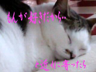 もんち-@神田川2