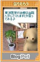 101215haritarou2.jpg