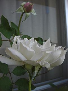 20091014.jpg