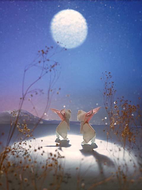 うさぎ 月見