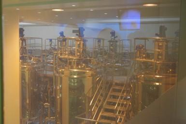 発酵11.3