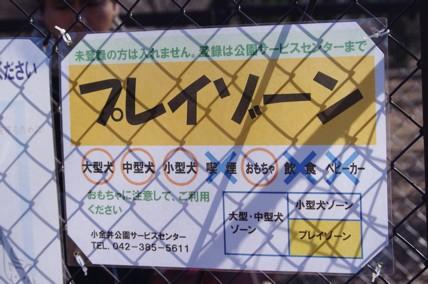小金井12.23