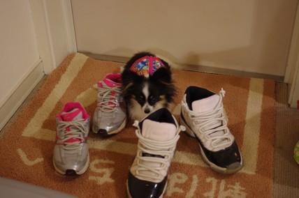 ほた靴1.09