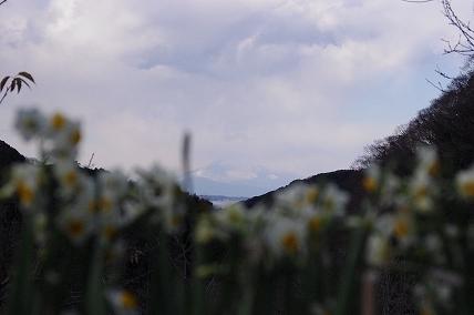 冨士山1.16