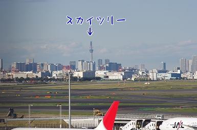 IMGP6268.jpg
