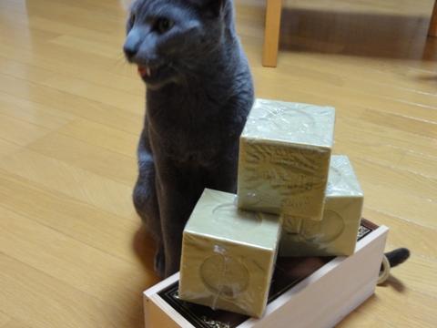 オリーヴ石鹸02(2011.06.01)