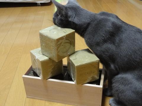 オリーヴ石鹸03(2011.06.01)