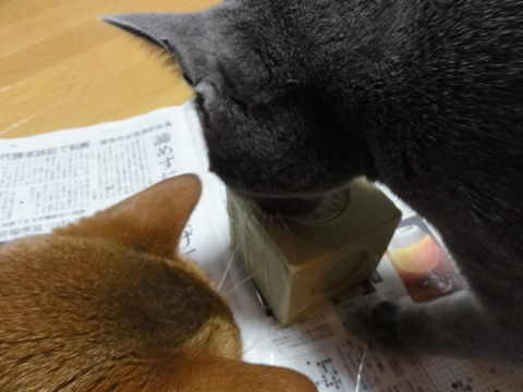 オリーヴ石鹸05(2011.06.01)