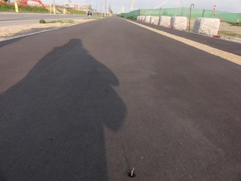 お散歩06(2011.06.05)