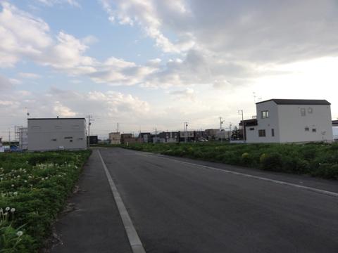 お散歩11(2011.06.05)
