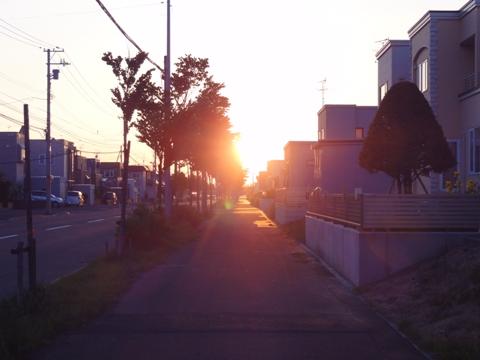 またお散歩02(2011.06.17)