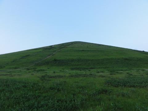 またお散歩05(2011.06.17)