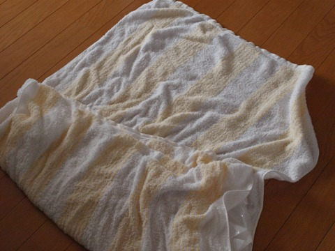 ひよひよひんやり02(2011.07.26)