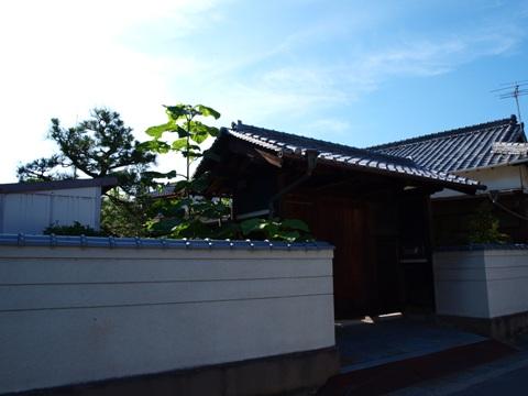 家プロジェクト周辺00(2011.08.07)