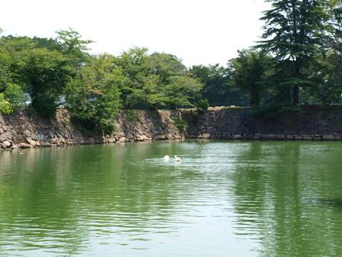 お堀(2011.08.09)
