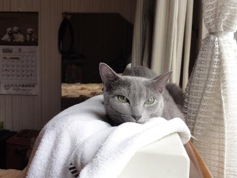まったりニコ02(2011.09.05)