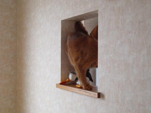 のぞき窓遊び03(2011.09.09)