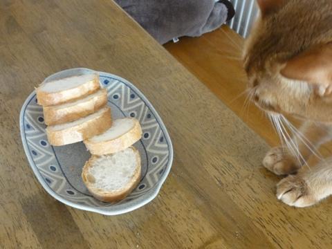 パンが好きなのよっ01(2011.09.13)