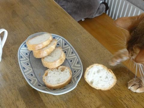 パンが好きなのよっ05(2011.09.13)