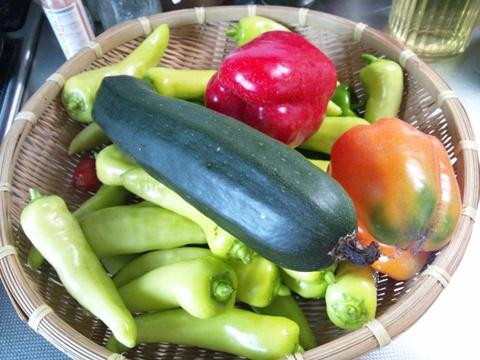 まだ続く夏野菜(2011.09.16)
