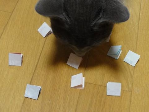 ジョセフィン嬢の選択04(2011.09.17)