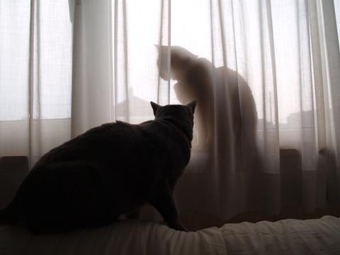 何がいるの?07(2012.03.30)