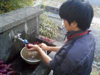 PAP_0004_convert_20101113214246.jpg