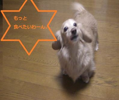 20111223002.jpg