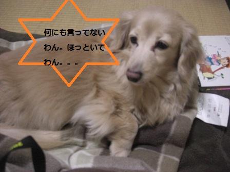 20120214014.jpg