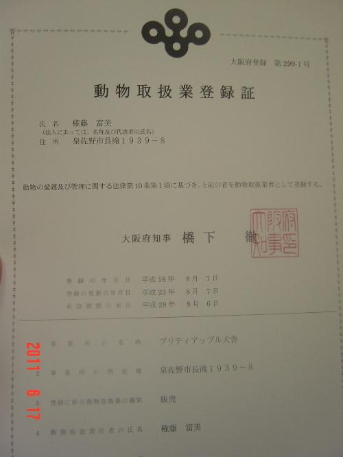 DSC03148.jpg