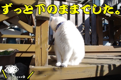 1.すれ違い翌日35