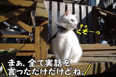 1.すれ違い翌日23