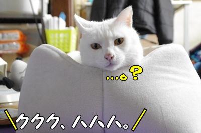 1.すれ違い翌日635