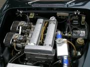 elg-8