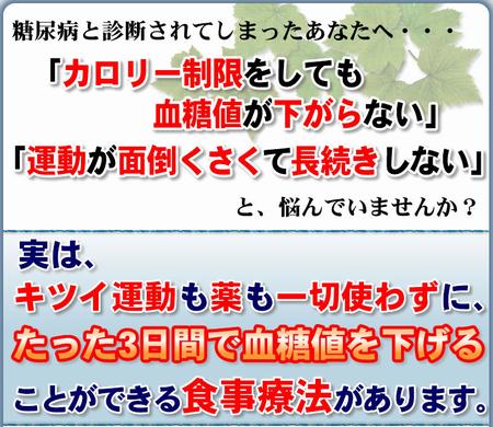 【糖尿病】薬なし注射なしで、食事だけで血糖値を下げる藤城式食事法DVD。