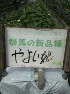 iphone_20120402090947.jpg
