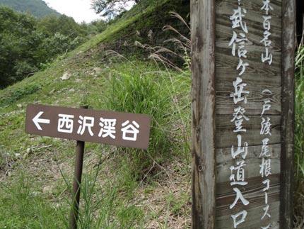 西沢渓谷 ぶどう