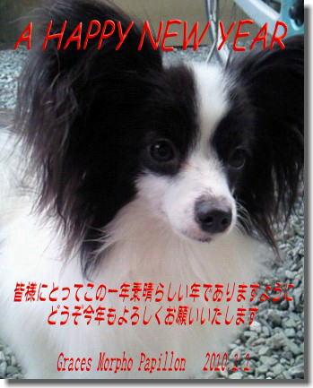 image_20100101033251.jpg