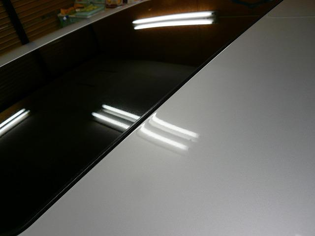 P1210969-450.jpg
