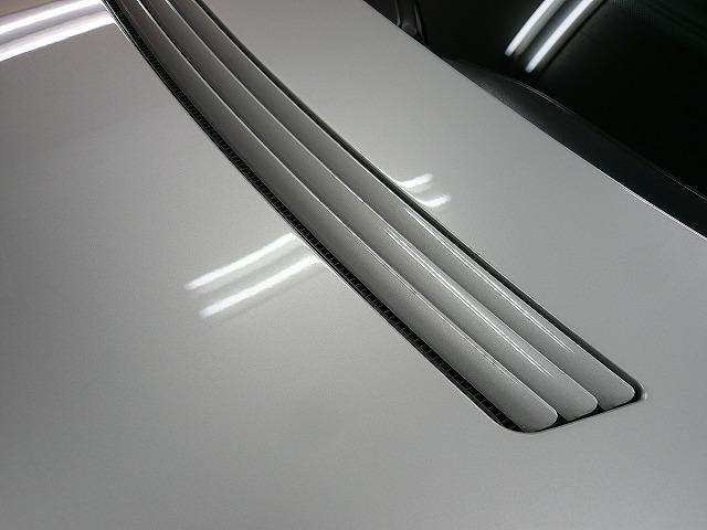 P1220038-450.jpg