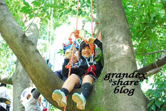 101023_share_treeing_05.jpg