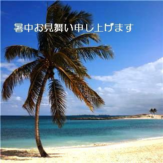 MH900428031.jpg
