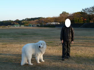 2010_11_16_05.jpg
