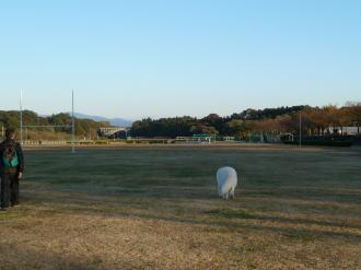 2010_11_16_06.jpg