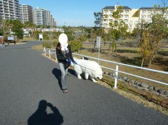 2010_11_27_02.jpg
